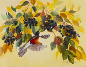 Wild Life Painting of Robin